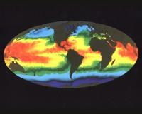Sea Surface Temperature Map/NASA